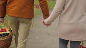 Couple in love walk in the park and hold hands. Lovers holding their hands. Outdoor of young couple in love walking on stock footage