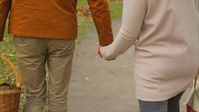 Couple in love walk in the park and hold hands. Lovers holding their hands. Outdoor of young couple in love walking on royalty free stock images