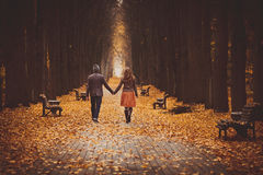 Couple in love walking on a beautiful autumn alley in the park. Couple walking on a beautiful autumn alley in the park Royalty Free Stock Images