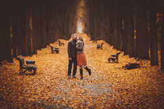 Couple in love walking on a beautiful autumn alley in the park Stock Photos