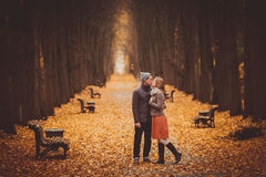 Couple in love walking on a beautiful autumn alley in the park. Couple walking on a beautiful autumn alley in the park