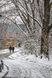 Couple in love walking by the river in the snow Royalty Free Stock Photography