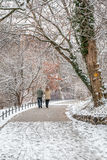 Couple in love walking in the snow. By the river in Berlin, Germany Royalty Free Stock Photo