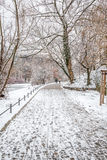 Couple in love walking in the snow Stock Image