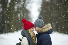 Couple in love in winter scenery Royalty Free Stock Image