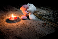 Couple lovers dolphin and in the light  candle. Royalty Free Stock Image