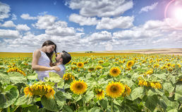 Couple of lovers in field of Sunflowers Stock Photo