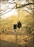 Couple, lovers in the forest holding hands. Couple of lovers. Two young people walking holding hands down forest path royalty free stock images