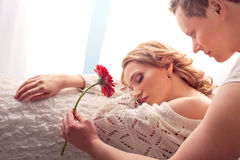 Couple of lovers. Man presents flower Royalty Free Stock Image