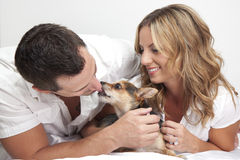 Couple loving pet dog Stock Image