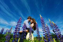 Couple in lupine flowers field Royalty Free Stock Photo