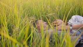 Couple lying in the grass stock video