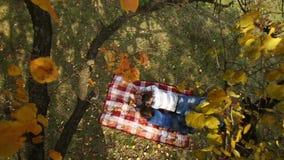 Couple Lying Under Autumn Tree. On a park stock footage