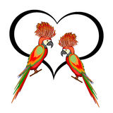 A couple of macaw parrots with a heart Royalty Free Stock Images