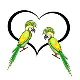 A couple of macaw parrots with a heart Stock Photos