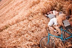 The couple - man, girl and bicycle lies on the rye field stock image
