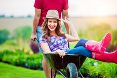 Couple with man giving woman ride in wheelbarrow Stock Image