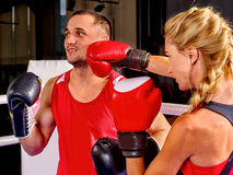 Couple Man and  Woman  Boxing in Ring Stock Photos