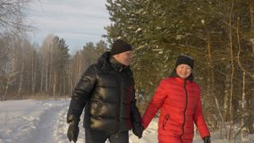 Couple man and woman holding hands walking in snowy pine forest at winter stock video footage