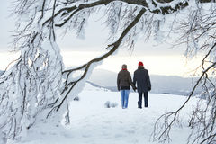 Couple Man Woman mountain winter tree Stock Photo