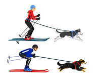 Couple, Man and Woman ski with their dogs vector illustration. Outdoor winter activity vector illustration