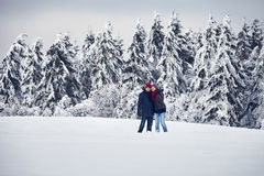 Couple Man Woman staiing, snow Royalty Free Stock Photo
