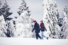 Couple man woman walk winter snow Stock Photos