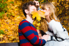 Couple with maple leaf kissing in autumn park Royalty Free Stock Images