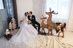 Couple married on Christmas Eve. Stock Image