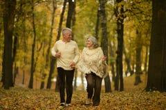 couple mature walking Στοκ εικόνα με δικαίωμα ελεύθερης χρήσης