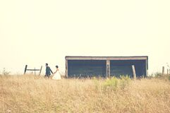 Couple in meadow Royalty Free Stock Images