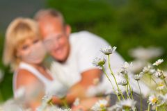 Couple on the meadow Royalty Free Stock Photography