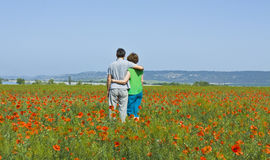 Couple on meadow with poppies Stock Images