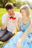 Couple in meadow with wine Royalty Free Stock Image