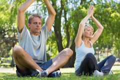 Couple meditating in park Stock Photography