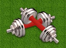 Couple of metal dumbbells over green grass Royalty Free Stock Images