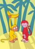 Couple of monkeys. Cartoon illustration of monkey couple Stock Images