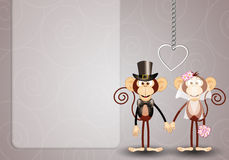 A couple of monkeys just married Stock Image
