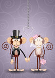 A couple of monkeys just married Royalty Free Stock Photography