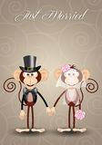 A couple of monkeys just married Stock Images