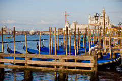 A couple in the most romantic city, Venice, Italy Royalty Free Stock Photography