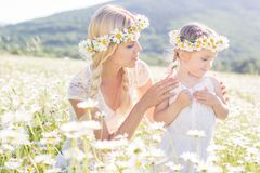 Couple mother and child in field of daisy flowers Stock Images