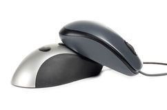 Couple mouse Stock Photography