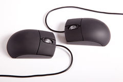Couple Mouses. Creative lovers couple Black computer mouses on white background stock photos