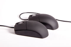 Couple Mouses. Creative lovers couple take sex position - Black computer mouses on white background royalty free stock photography