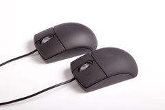Couple Mouses. Creative lovers couple take sex position - Black computer mouses on white background stock photo