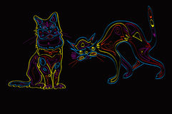 Couple Of Neon Cats Royalty Free Stock Photo