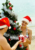 Couple by New Year tree Stock Photography