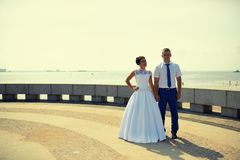 Couple of newlyweds on the embankment Royalty Free Stock Images