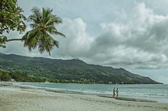 A couple on the nice beach with white sand, palms and green hills Stock Image